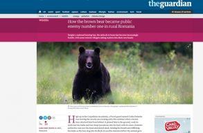 Borboly medveproblémájával foglalkozik a Guardian. És a Régiók Bizottsága is