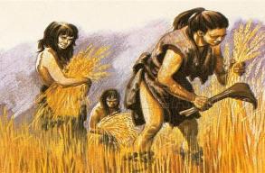 Az újkõkori nõk karja erõsebb volt, mint a mai evezõsöké