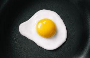 1,5 ezer helyett 15 ezer tojást kaptak, mert Google Translate-tel rendeltek