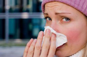 Sokan haltak meg az év elején influenzában