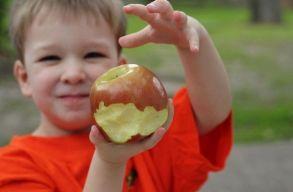 Kihirdette Johannis az iskolásoknak friss gyümölcsöt és zöldséget biztosító törvényt