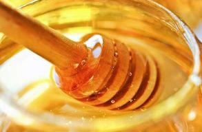 Mézet kaphatnak a kisdiákok a tej és kifli program kiegészítéseként