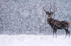 Sûrû havazásra, hóviharokra és rendkívüli hidegre figyelmeztetnek a meteorológusok
