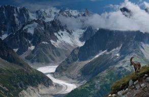 A globális felmelegedésben kizöldültek az európai hegycsúcsok