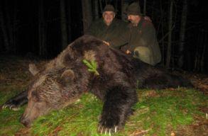 Csupán a trófeavadászoknak lesz jó a medvéket védõ törvénytervezet?