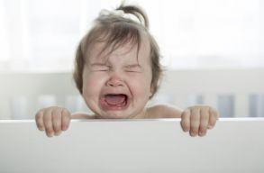 Készült egy applikáció, amely lefordítja, hogy miért sír a csecsemõ
