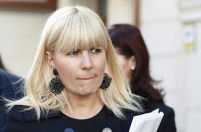 Nemzetközi elfogatóparancsot kért a rendõrség Elena Udrea ellen