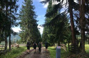 Készül az igazi erdélyi El Camino. 950 kilométert lehet majd gyalogolni vagy bringázni rajta