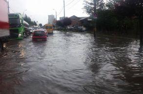 Kolozsváron fákat döntött ki a vihar és alagsorokat öntött el a víz csütörtök délután