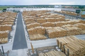 A Scweighofer továbbra is illegálisan kitermelt fát árusít egy új jelentés szerint