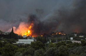 Legalább 50-en meghaltak a görögországi futótûzben