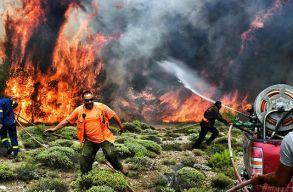 Szándékos gyújtogatás okozhatta a görögországi tûzvészt