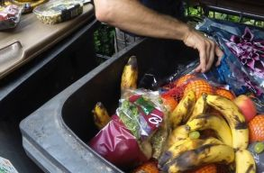 A romániaiak fele kidobja a megvásárolt élelmiszerek egynegyedét