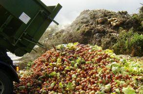 Ha ezt így folytatjuk, akkor 2030-ra másodpercenként 66 tonna élelmet hagyunk veszendõbe menni