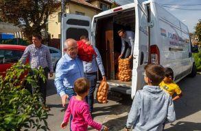Kolozsváron 600 kilogramm zöldséget és gyümölcsöt osztottak ki a rászorulóknak