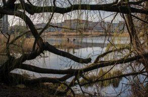 A Keleti Park lehetne Kolozsvár legnagyobb, védett területû közparkja, ha az önkormányzat is akarná