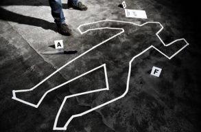 Ezekben a megyékben történik a legtöbb gyilkosság