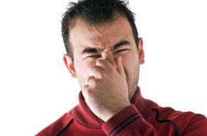 A BBTE munkatársai kikutatták, hogy milyen meghatározottságú a szagtudatosságunk