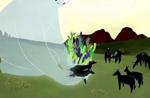 LOVE: magyar animációs kisfilmet ajánlunk Bálint-napra