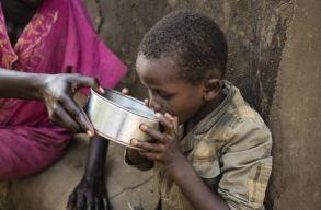 Gyilkosabb a vízhiány, mint a háborúk