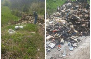 Két tonna rothadó állati tetemet találtak egy Maros megyei községben