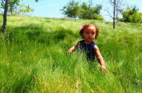 Természethiány-zavaros nemzedék: túl keveset vannak a szabadban a fiatalok