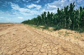 Évi 180 milliárd euróba kerülne az EU-ban a klímaváltozás csökkentése
