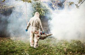 A nyári szúnyogirtás nem túl hatékony és a környezetre is ártalmas lehet. De akkor mi a megoldás?