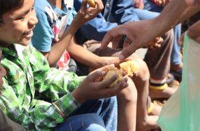 ENSZ-jelentés: már 820 millióan éheznek világszerte