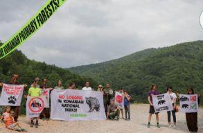 A környezetvédõk szerint nemzetközi botrány is lehet a Bãsescu út megépítésébõl