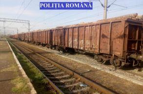 40 vagon fát foglalt le a rendõrség, amit illegálisan Kovászna fele szállítottak