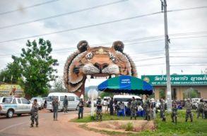 A thai hatóságok úgy mentettek meg 147 tigrist, hogy több mint felük elpusztult