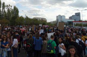 Az állatok jogaiért vonultak Bukarestben