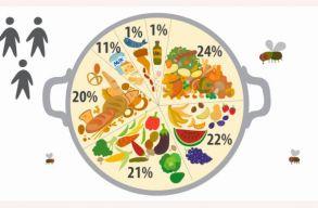 A megtermelt élelem 14%-át el sem adják, mert még azelõtt tönkremegy