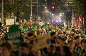 A törvénytelen erdõirtások és az erdészek elleni erõszak miatt tüntettek a környezetvédõk