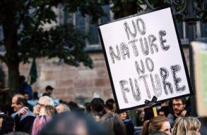 Mintegy 11 ezer tudós támogatja a klímavészhelyzetrõl szóló tudományos kutatást