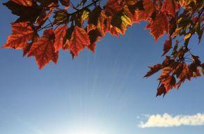 Az idei október volt a valaha mért legmelegebb