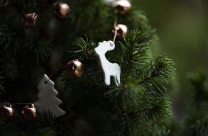 Hogyan készül a karácsonyra az erdélyi magyar férfi politikus?