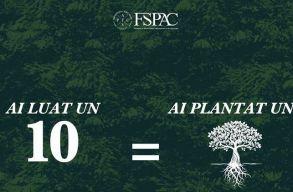 Egy kolozsvári egyetem annyi fát fog elültetni ebben a szemeszterben, ahány 10-es vizsgát hoznak össze a hallgatói