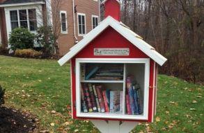 Mini közösségi könyvtár nyílik Szatmárnémetiben