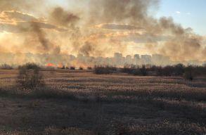 20 hektáron lángol a bukaresti Vacaresti-tó környéki vegetáció