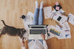 Otthoni munkára kényszerül? Akár már erdélyi megoldás is van