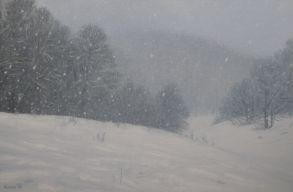 Erõs szélre és havazásra adtak ki figyelmeztetést az ország tizennégy megyéjében