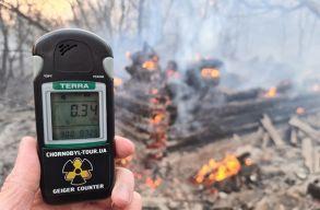 Ég az erdõ Csernobil körül, megugrott a radioaktív sugárzás