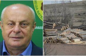 Teodor Þigan: Az illegális fakitermelés külföldi országok Románia-ellenes propagandája