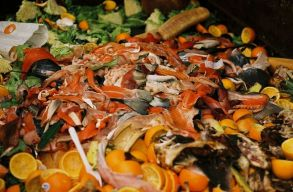 Évente átlagosan 129 kg élelmet dob el minden román állampolgár