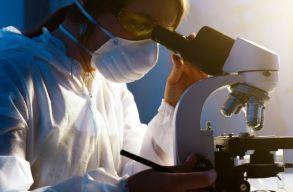 Hogyan ugranak át a vírusok állatról emberre? És meddig tarthat a járvány? Mikrobiológust kérdeztünk