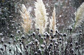 Havazás várható a Déli- és a Keleti- Kárpátokban
