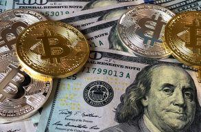 Milliomos lehetne, de elfelejtette bitcoinos pénztárcája jelszavát