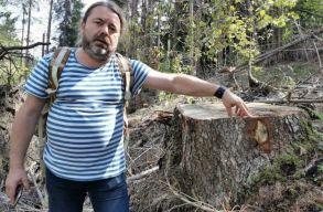 Mihai Goțiu a SUMAL-ról és arról, hogy az USR-PLUS miért nem akarta a környezetvédelmi minisztériumot